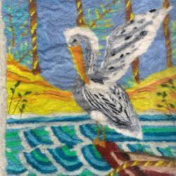 Pelican sur barque